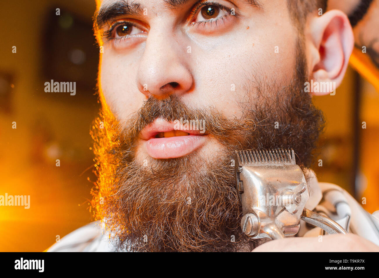 Barber cuts a beard of vintage hair clippers to a young handsome guy with a beard and mustache. Men's hair salon. - Stock Image