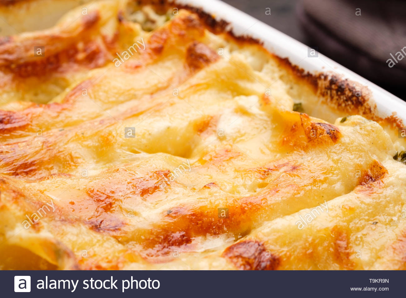 Close-up Canelloni with farmers cheese gratinated and filled - Stock Image