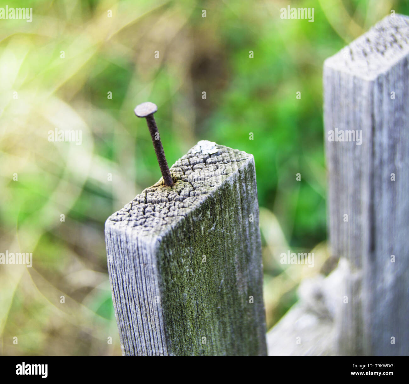 Old wooden fence and a rusty nail sticking out. Stock Photo