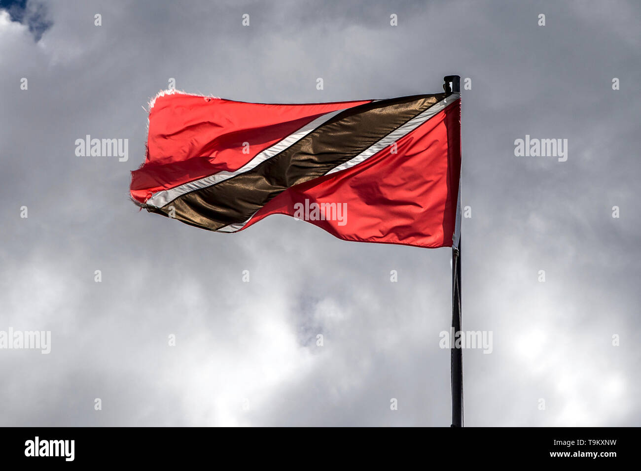 Tinidad & Tobago Flag - Stock Image