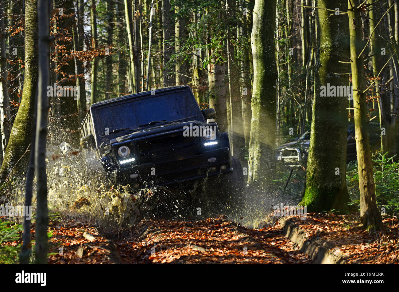 SUV or offroad car on path covered with leaves crossing puddle with water splash. Offroad race on fall nature background Extreme, challenge and 4x4 - Stock Image