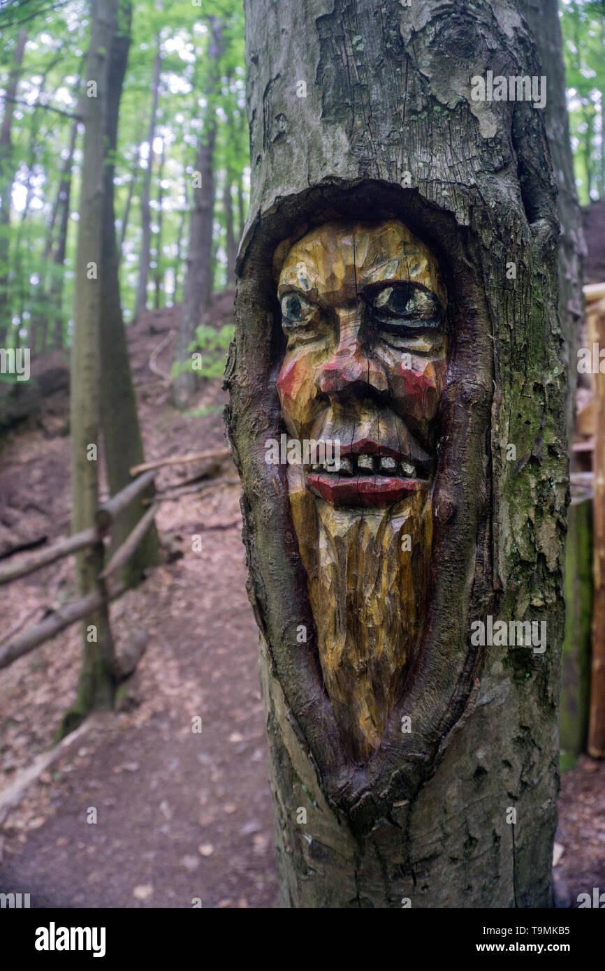 Carved face in a tree trunk, Steckeschlääfer-Klamm, Binger forest, Bingen on the Rhine, Rhineland-Palatinate, Germany - Stock Image