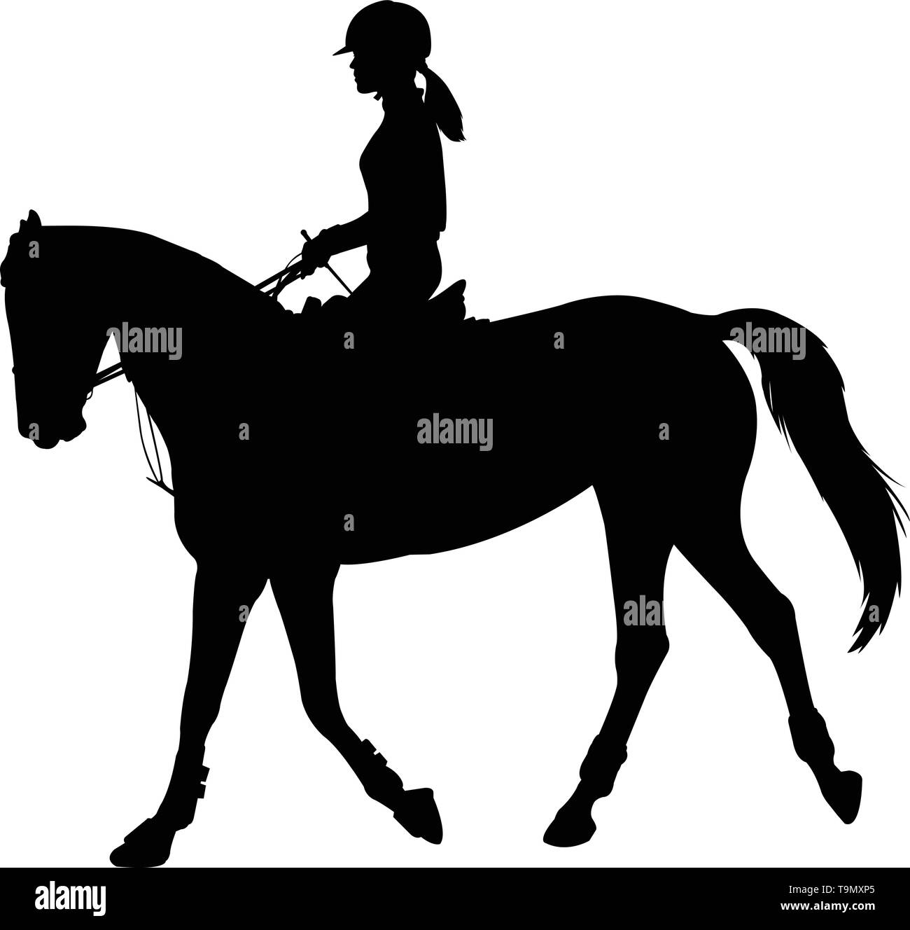 high quality silhouette of young female riding elegant horse - vector Stock Vector