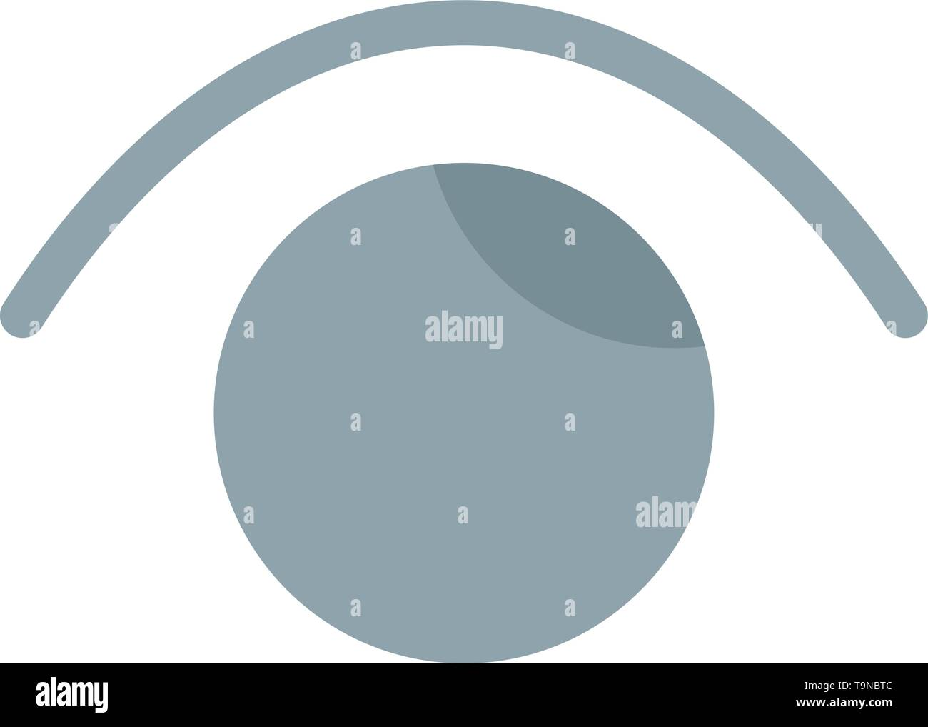 Eye, View, Watch, Twitter  Flat Color Icon. Vector icon banner Template - Stock Image