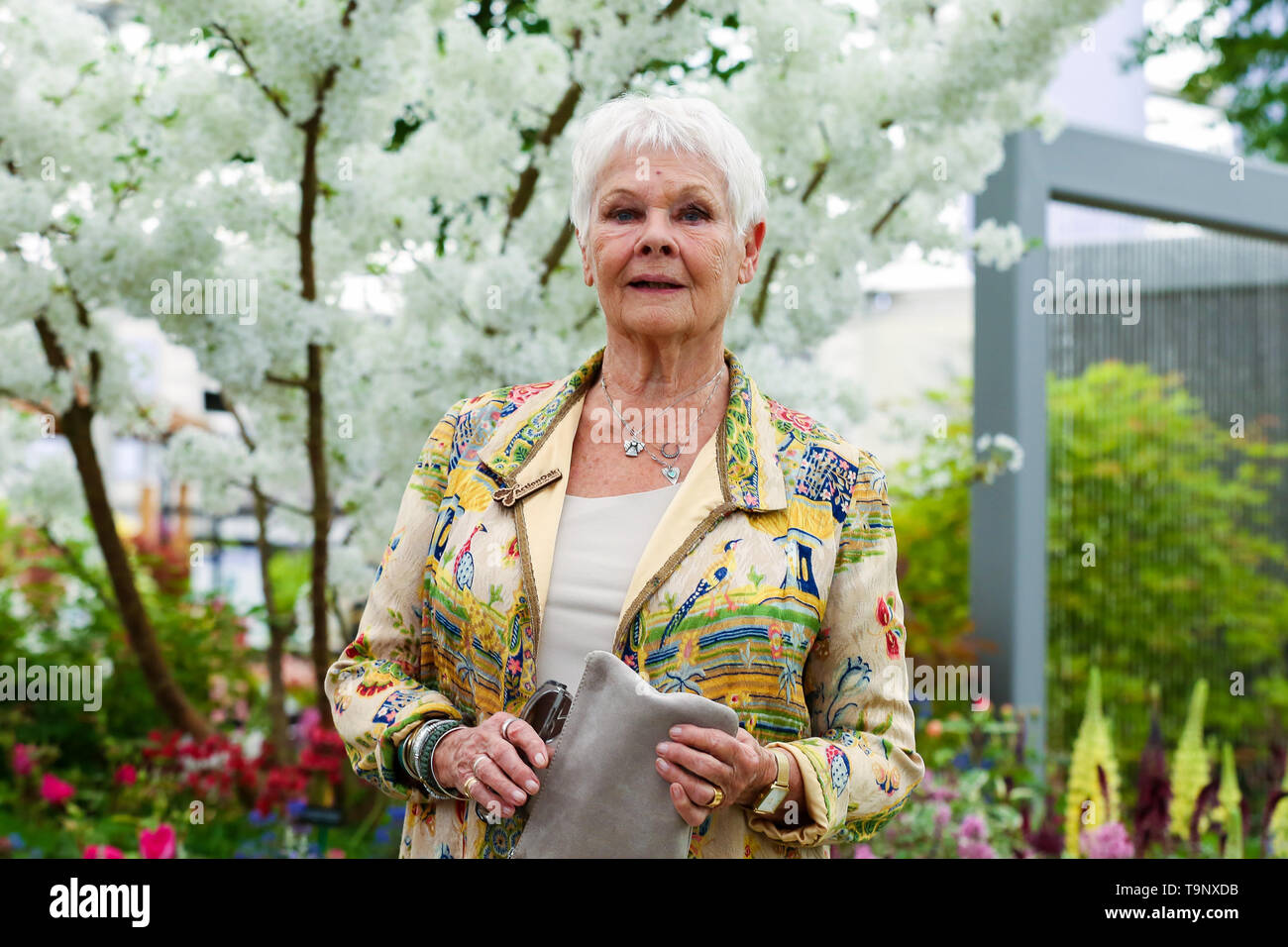 Royal Hospital Chelsea. West London, UK. 20th May, 2019. Dame Judith Dench visits Hillier Nurseries. The Royal Horticultural Society Chelsea Flower Show is an annual garden show held over five days in the grounds of the Royal Hospital Chelsea in West London. The show is open to the public from 21 May until 25 May 2019. Credit: Dinendra Haria/Alamy Live News Stock Photo