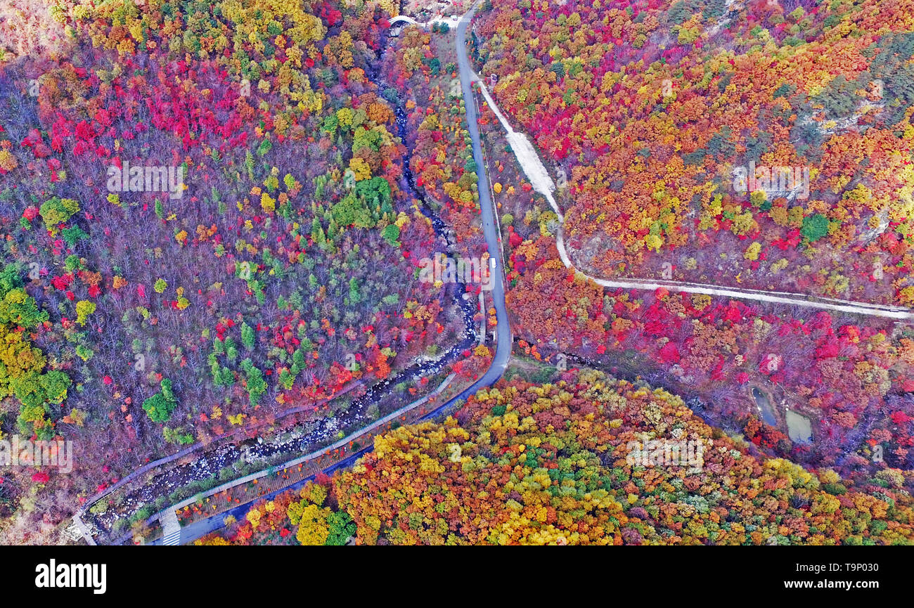 (190520) -- BEIJING, May 20, 2019 (Xinhua) -- Aerial photo taken on Oct. 11, 2017 shows the Tianqiaogou forest park in Dandong, northeast China's Liaoning Province. Liaoning Province is located in the southern part of Northeast China, with the Bohai Sea and the Yellow Sea lying to its south. Over the years, the provincial government has prioritized ecological development and set environmental improvement at the core of its agenda. The province's ecological conditions have been improving thanks to systematic conservation of the natural environment, overall management of the rural environment, a - Stock Image