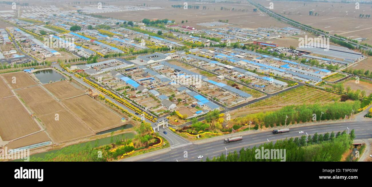 (190520) -- BEIJING, May 20, 2019 (Xinhua) -- Aerial photo taken on May 8, 2019 shows a scenery of Dabaozi Village of Dawa District in Panjin, northeast China's Liaoning Province. Liaoning Province is located in the southern part of Northeast China, with the Bohai Sea and the Yellow Sea lying to its south. Over the years, the provincial government has prioritized ecological development and set environmental improvement at the core of its agenda. The province's ecological conditions have been improving thanks to systematic conservation of the natural environment, overall management of the rural - Stock Image