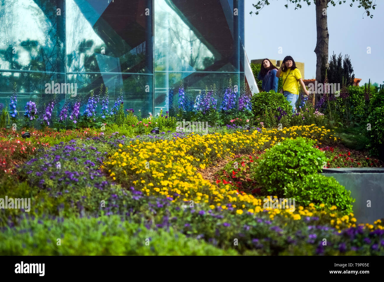 (190520) -- BEIJING, May 20, 2019 (Xinhua) -- Visitors tour the Liaoning Garden of the Beijing International Horticultural Exhibition in Beijing, capital of China, April 29, 2019. Liaoning Province is located in the southern part of Northeast China, with the Bohai Sea and the Yellow Sea lying to its south. Over the years, the provincial government has prioritized ecological development and set environmental improvement at the core of its agenda. The province's ecological conditions have been improving thanks to systematic conservation of the natural environment, overall management of the rural - Stock Image