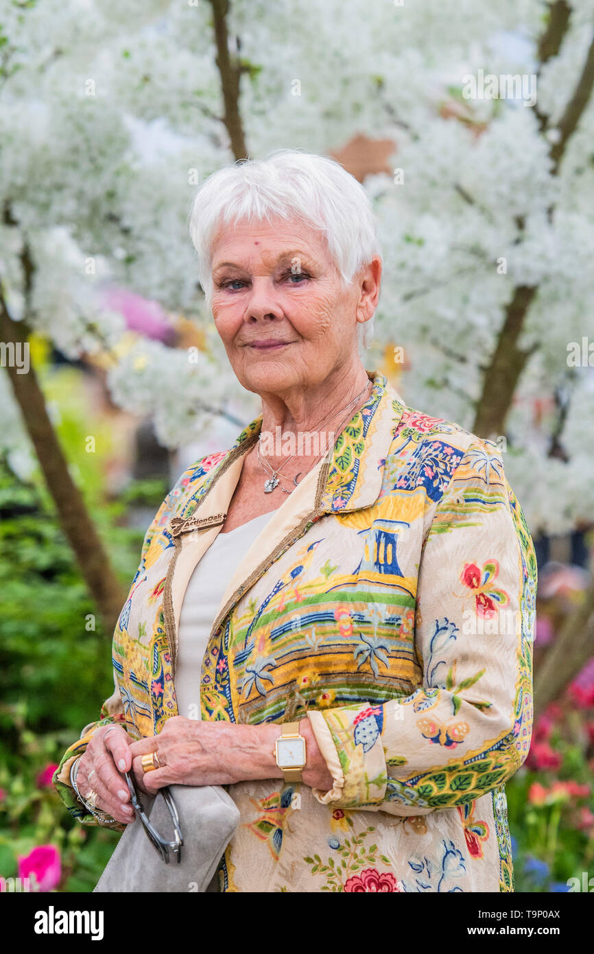 London, UK. 20th May, 2019. Dame Judi Dench launches a re-elming initiative on the Hillier Nurseries stand - Press preview day at The RHS Chelsea Flower Show. Credit: Guy Bell/Alamy Live News Stock Photo