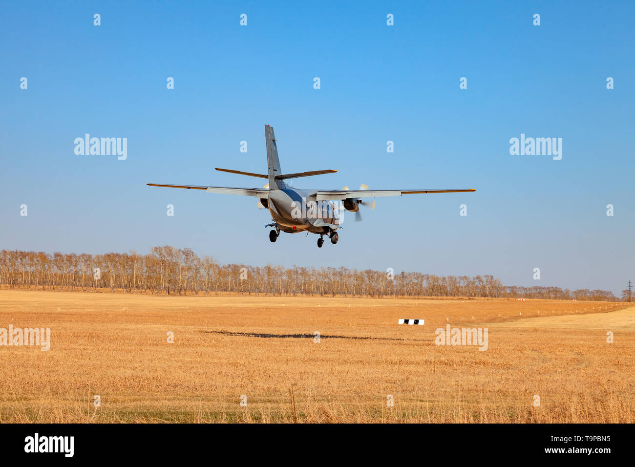 A small aircraft for the transport of passengers and paratroopers lands in a field on a landing strip with grass under a blue sky above the trees on a - Stock Image