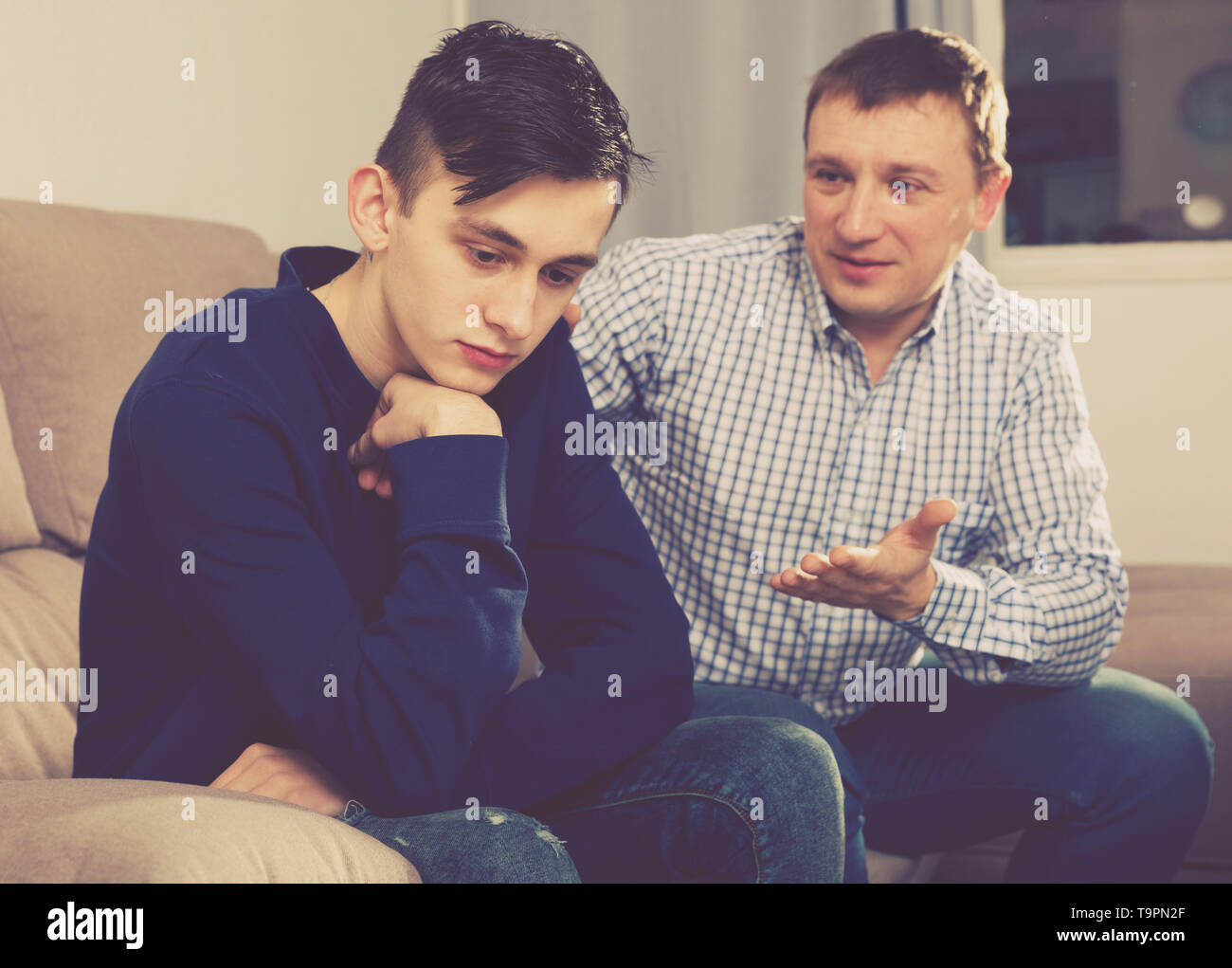 Boy is offended and father is asking for his forgiveness at the home. - Stock Image