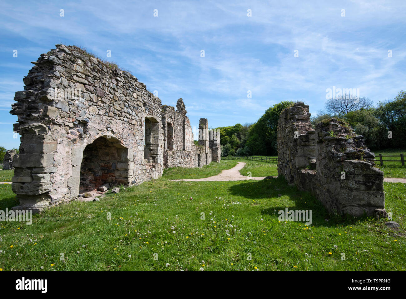 Ruins off Grace Dieu Priory, Thringstone Leicestershire England UK - Stock Image