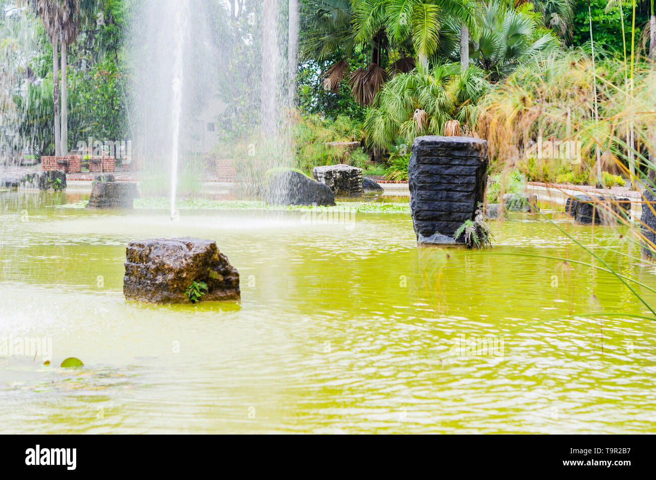 pond with granite rocks adorning a fountain in the foreground and background surrounded by vegetation and tropical freshness - Stock Image