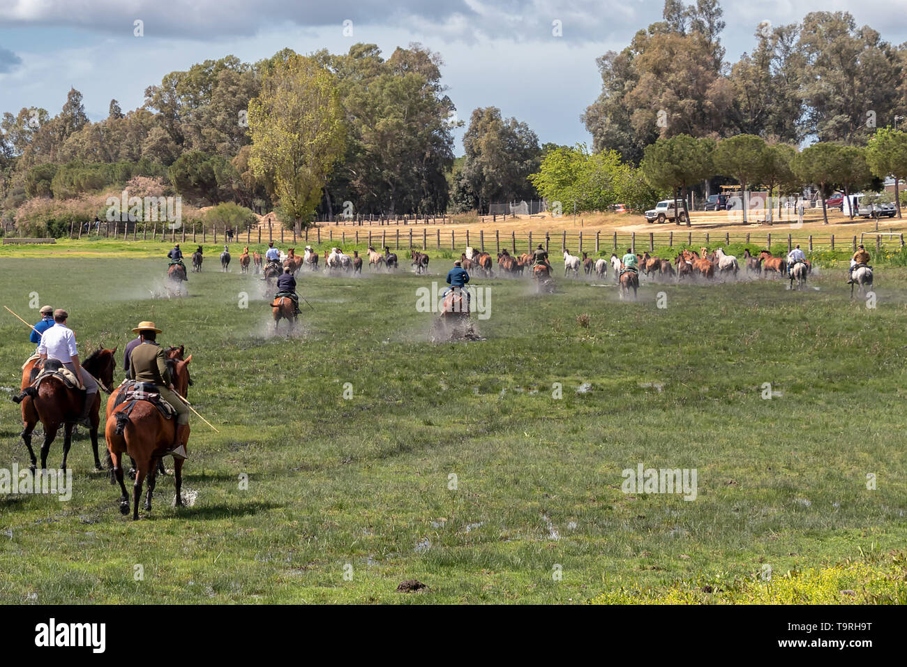 Keepers of breeding mares in El Rocio wetlands,  guiding horses and mares to be baptized - Stock Image