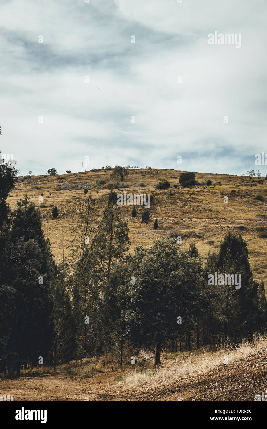 Scenic landscape at the Adelong Falls Gold Mill ruins, near Tumut New South Wales - Stock Image