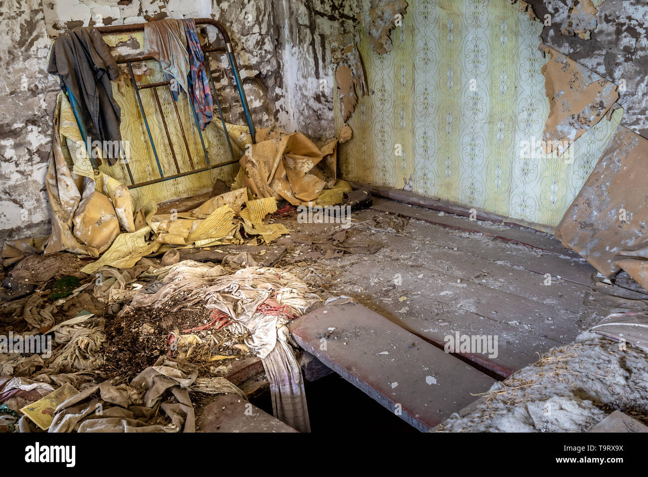 Interior of an abandoned house in Chernobyl exclusion zone in Belarus - Stock Image
