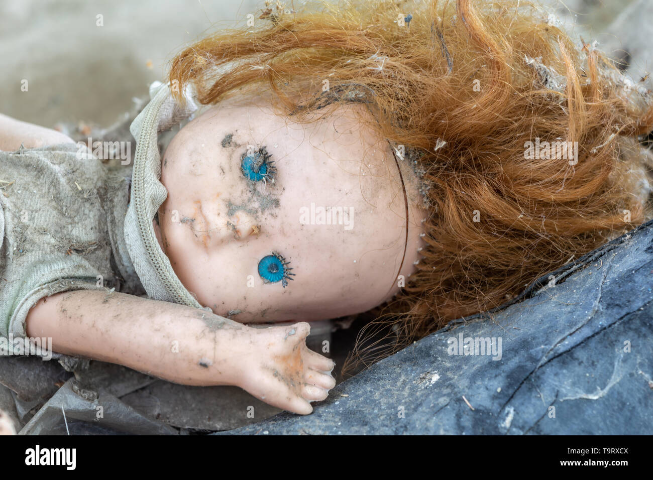 Dirty old doll in an abandoned house in Chernobyl exclusion zone in Belarus - Stock Image