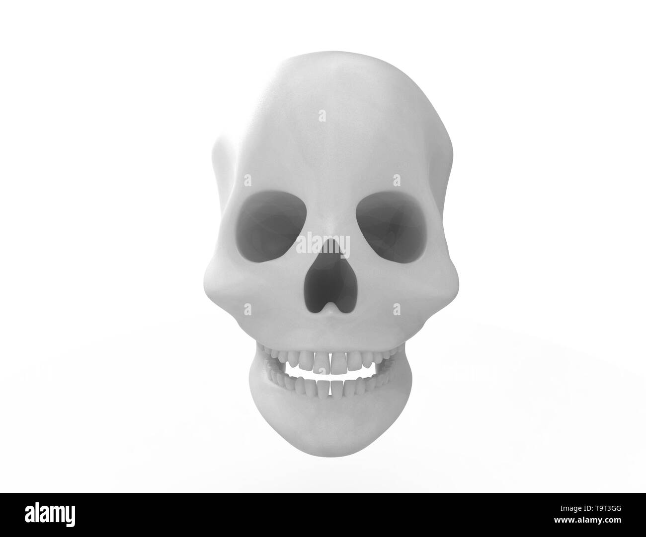 3D rendering of a skull isolated on white background. Stock Photo