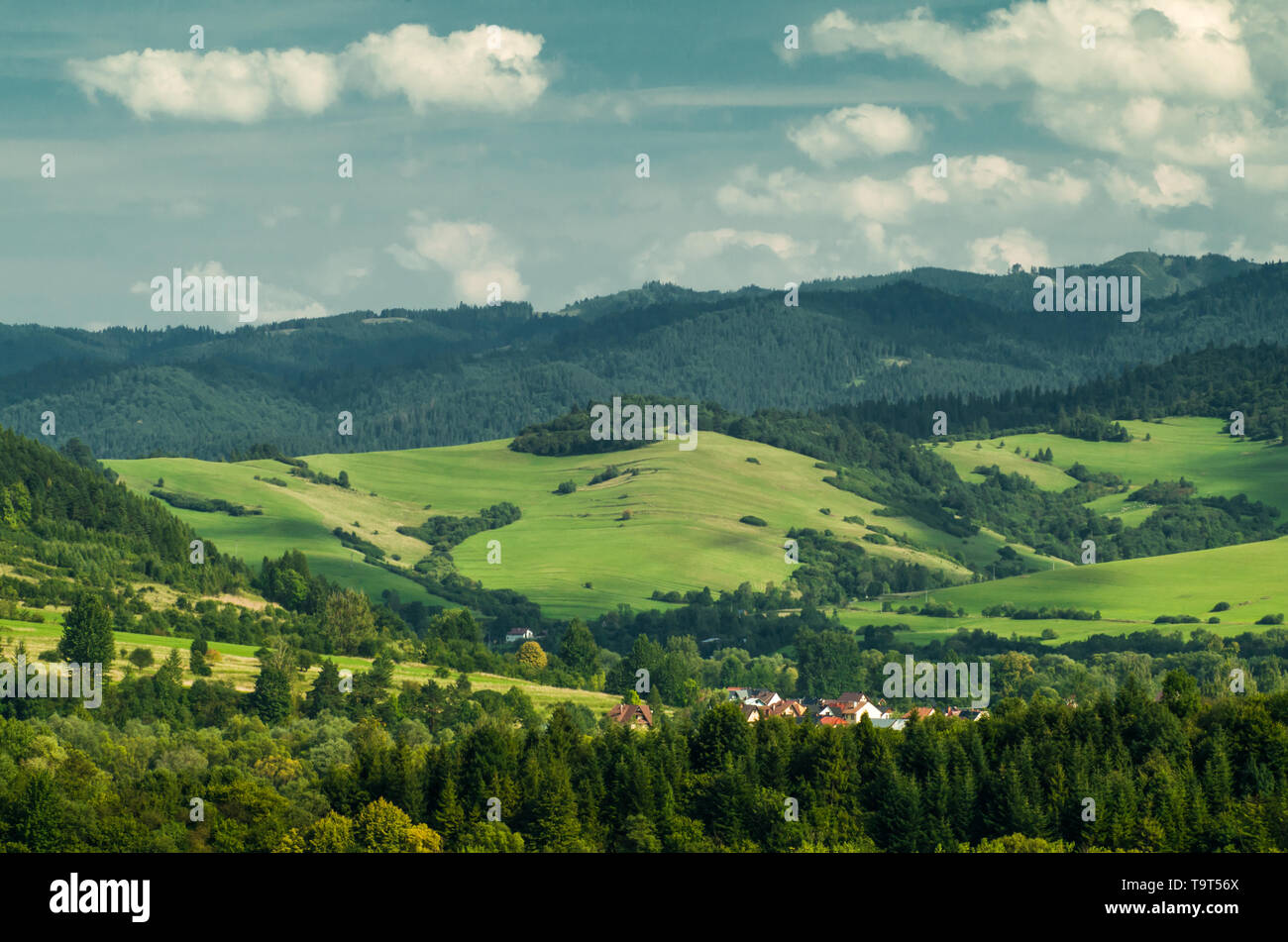 Forested hills with fresh green grass and in Pieniny Mountains during summer, Poland. - Stock Image