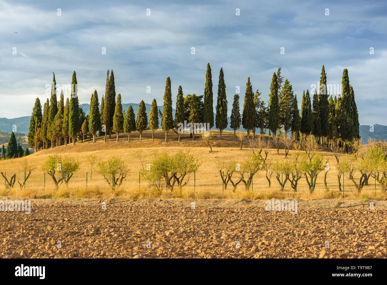 Romeral Dolmen Antequera, Malaga. Spain. UNESCO World Heritage - Stock Image