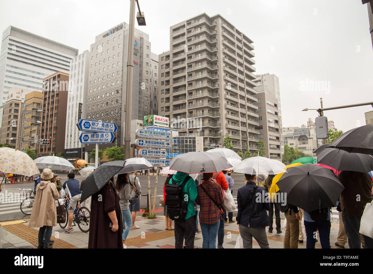People are waiting for the green light on Harumi-dori Ave. in modern part of Tokyo, Japan. Stock Photo