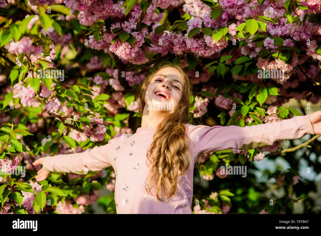 Capturing a happy moment. Natural cosmetics for skin. happy girl in cherry flower. Sakura tree blooming. small girl child in spring flower bloom. summ - Stock Image