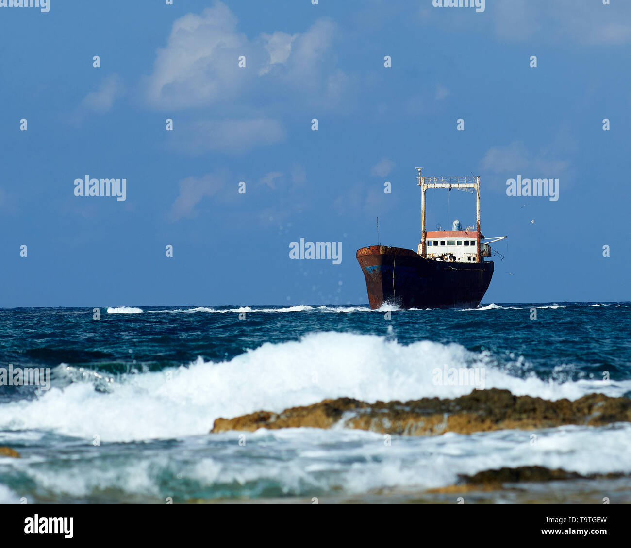 Shipwrecked MV Demetrios II, Cyprus - Stock Image