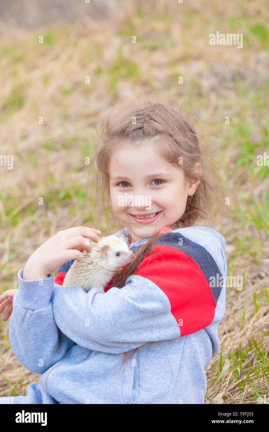 The concept that animals are man's best friends. Little girl holding a hedgehog. The child plays with a pet. - Stock Image