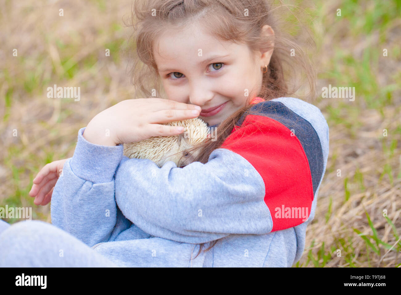 The concept of friendship between humans and animals. Little girl hugging a hedgehog. A child plays with a rodent. - Stock Image