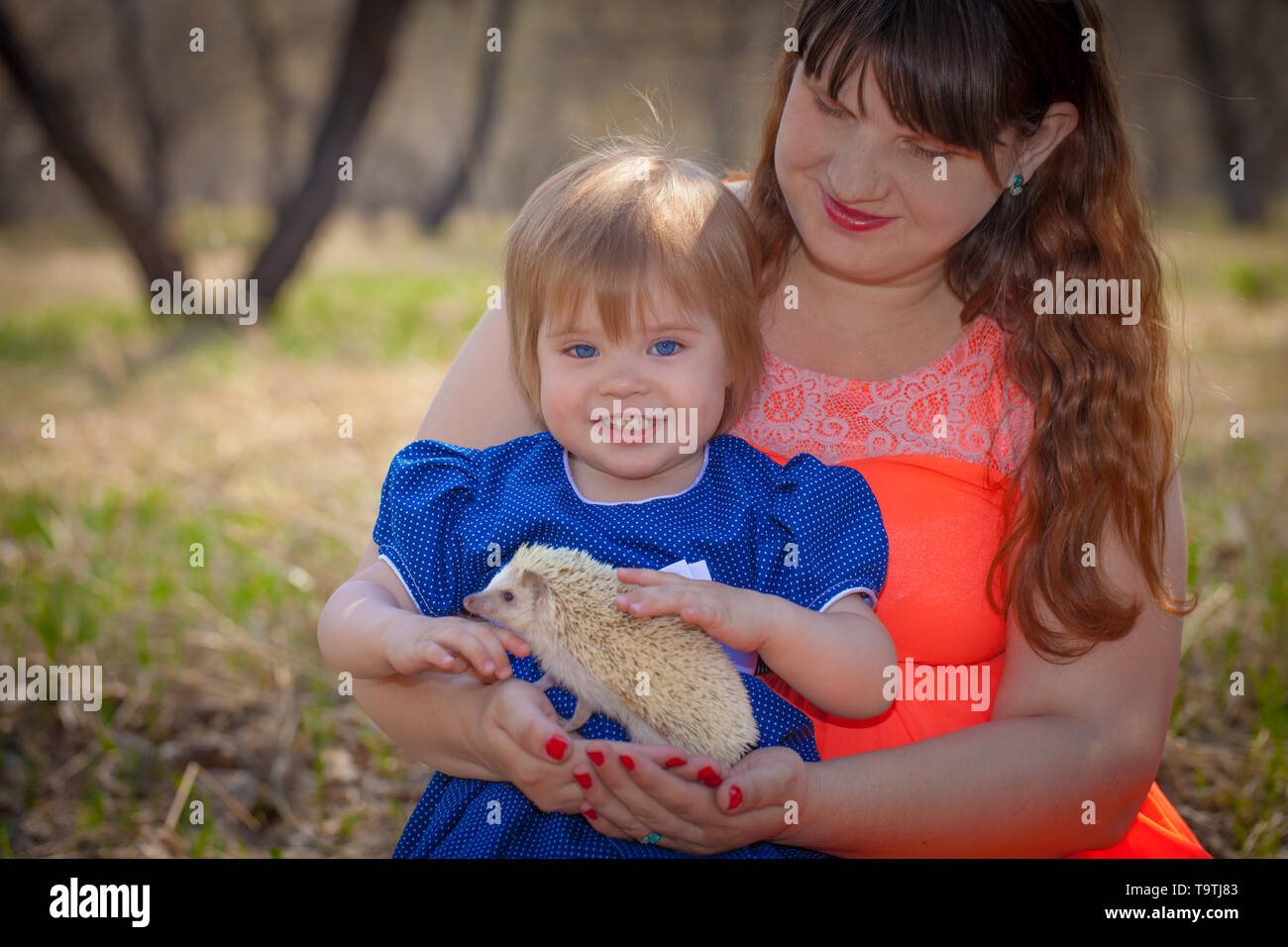 Family concept. Mom and daughter are playing with a hedgehog. Little girl petting a rodent. - Stock Image