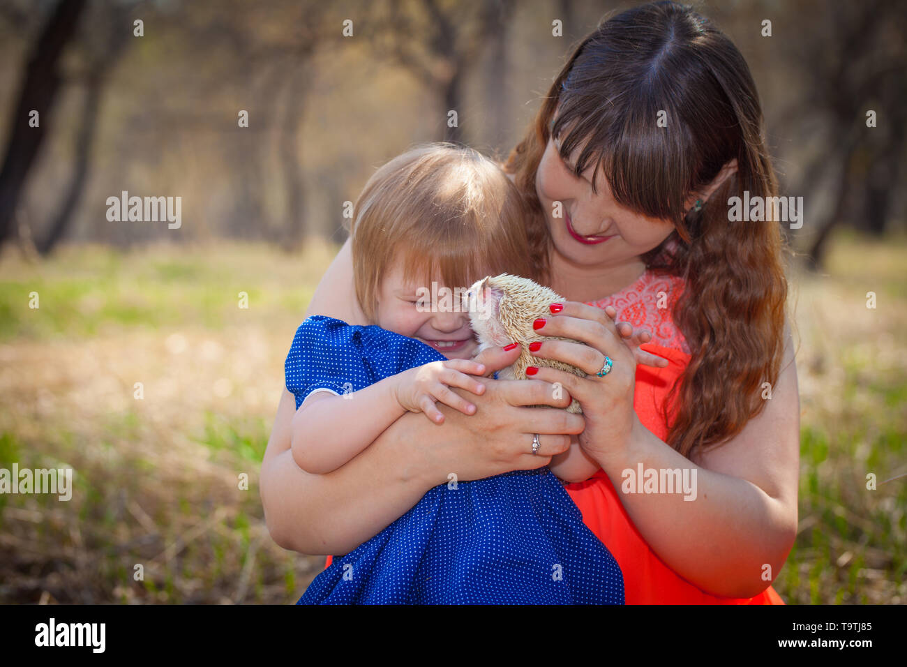 The concept of fun. Mom and daughter are playing with a hedgehog. The little girl laughs with happiness. - Stock Image