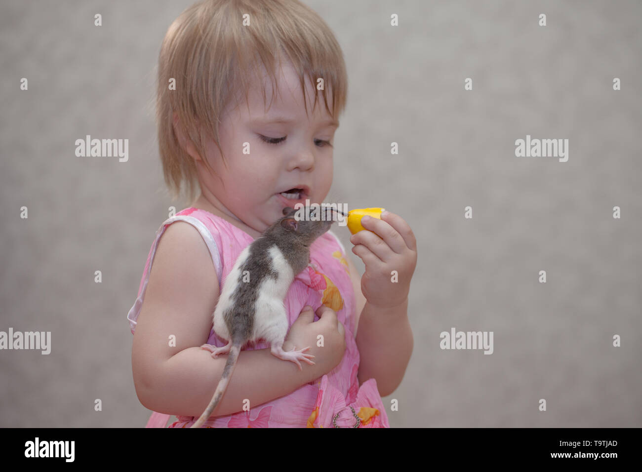 Mouse Girl Stock Photos & Mouse Girl Stock Images - Alamy