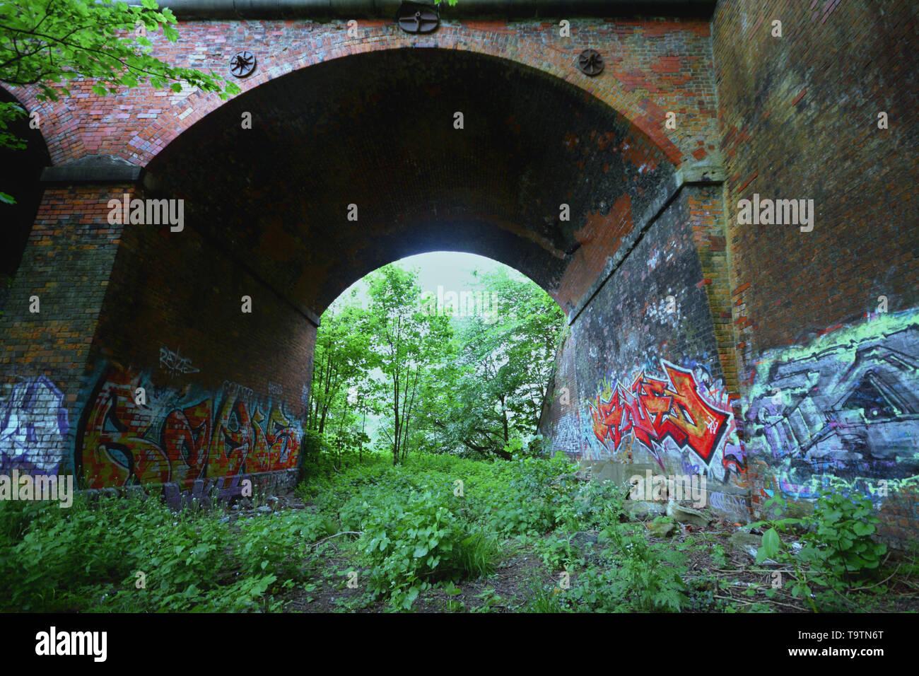 forest bridge - Stock Image