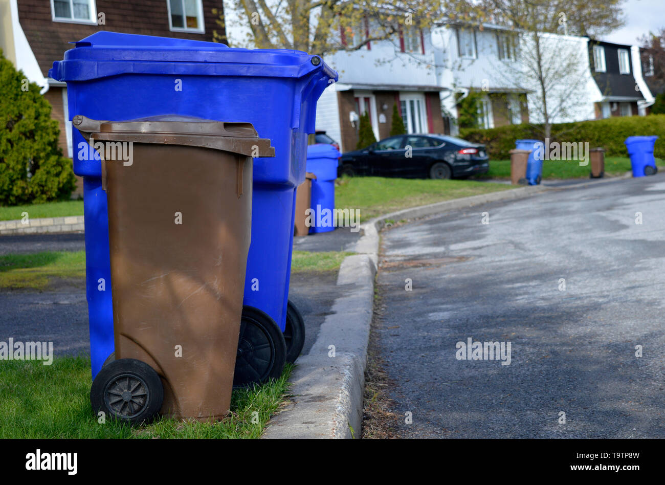 A street lines with recycle bins on collection day in Gatineau, Canada - Stock Image