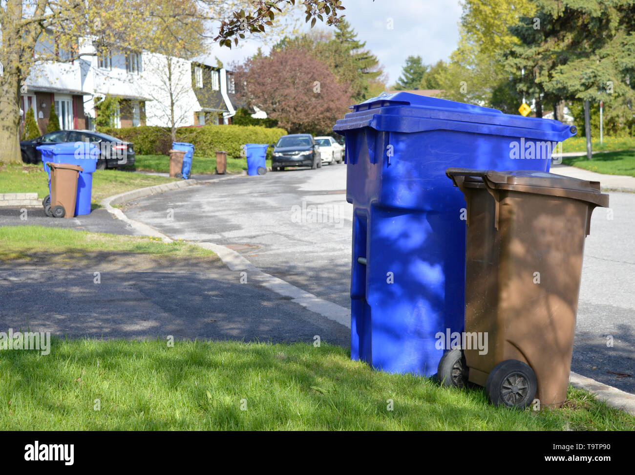 Recycle bins and compost bins line a street awaiting collection from the city - Stock Image