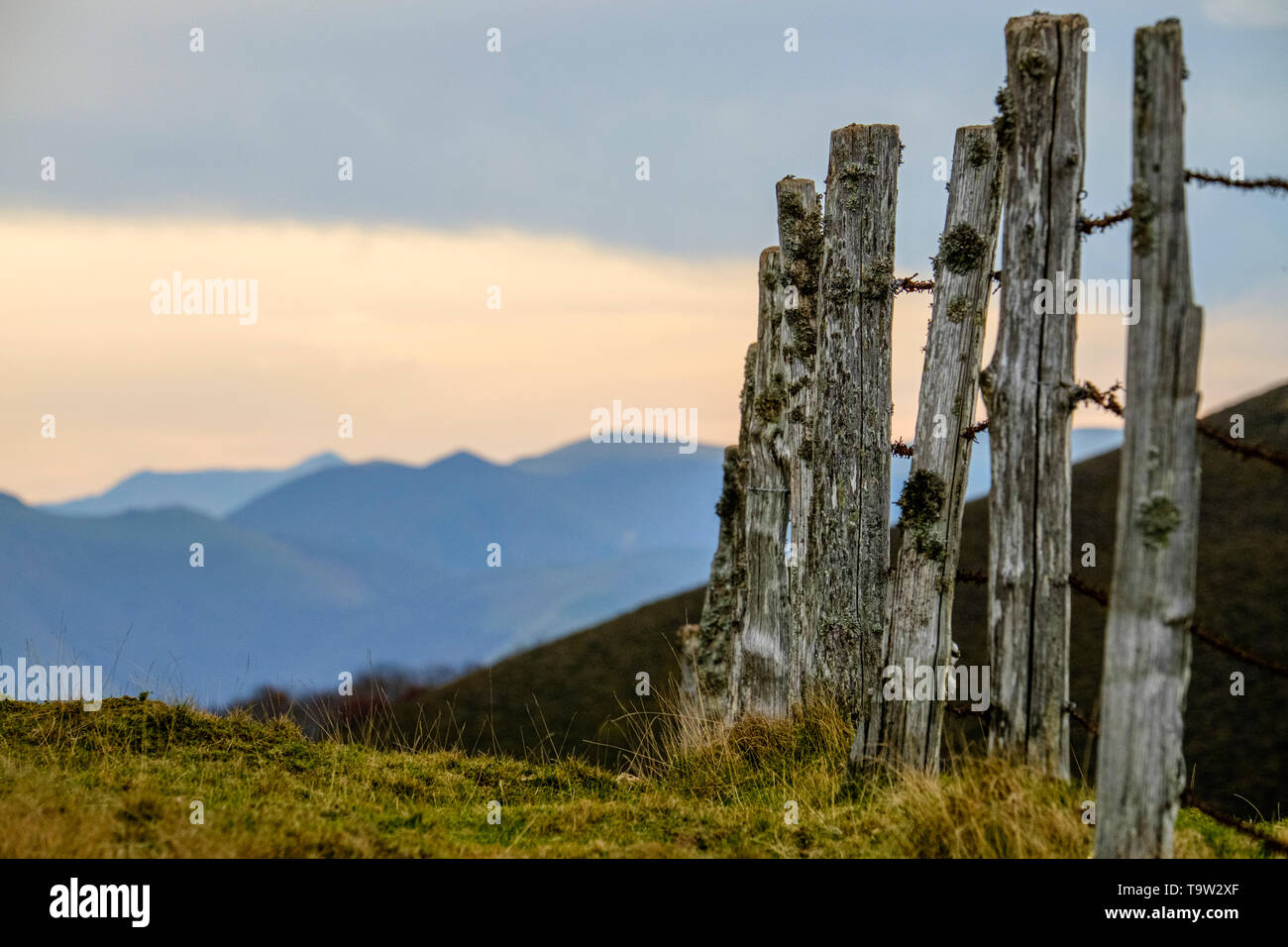 Roncesvalles fence in Autumn, Navarre, Spain - Stock Image