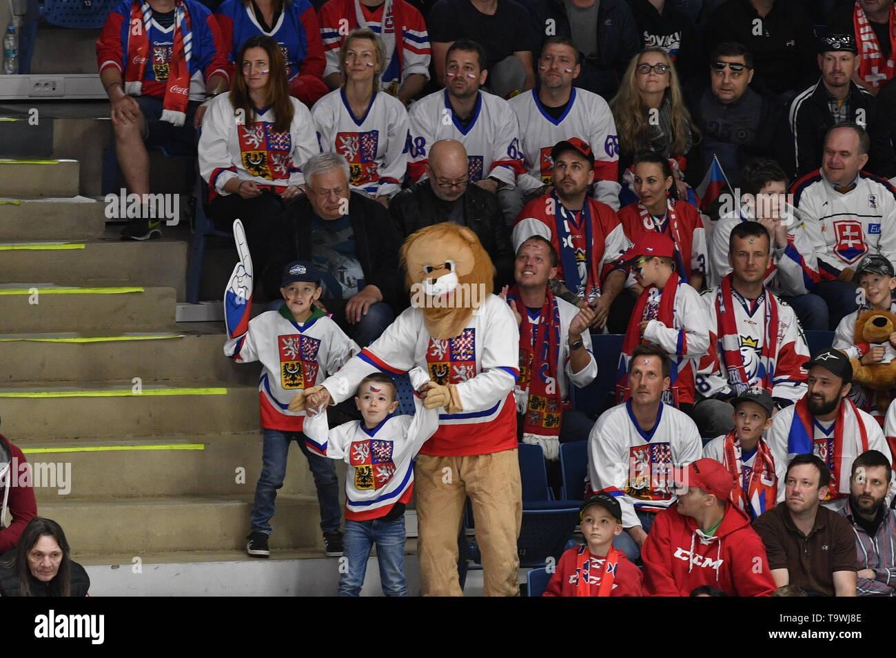 Bratislava, Slovakia. 21st May, 2019. Czech fans are seen during the match between Czech Republic and Switzerland within the 2019 IIHF World Championship in Bratislava, Slovakia, on May 21, 2019. Credit: Vit Simanek/CTK Photo/Alamy Live News Stock Photo