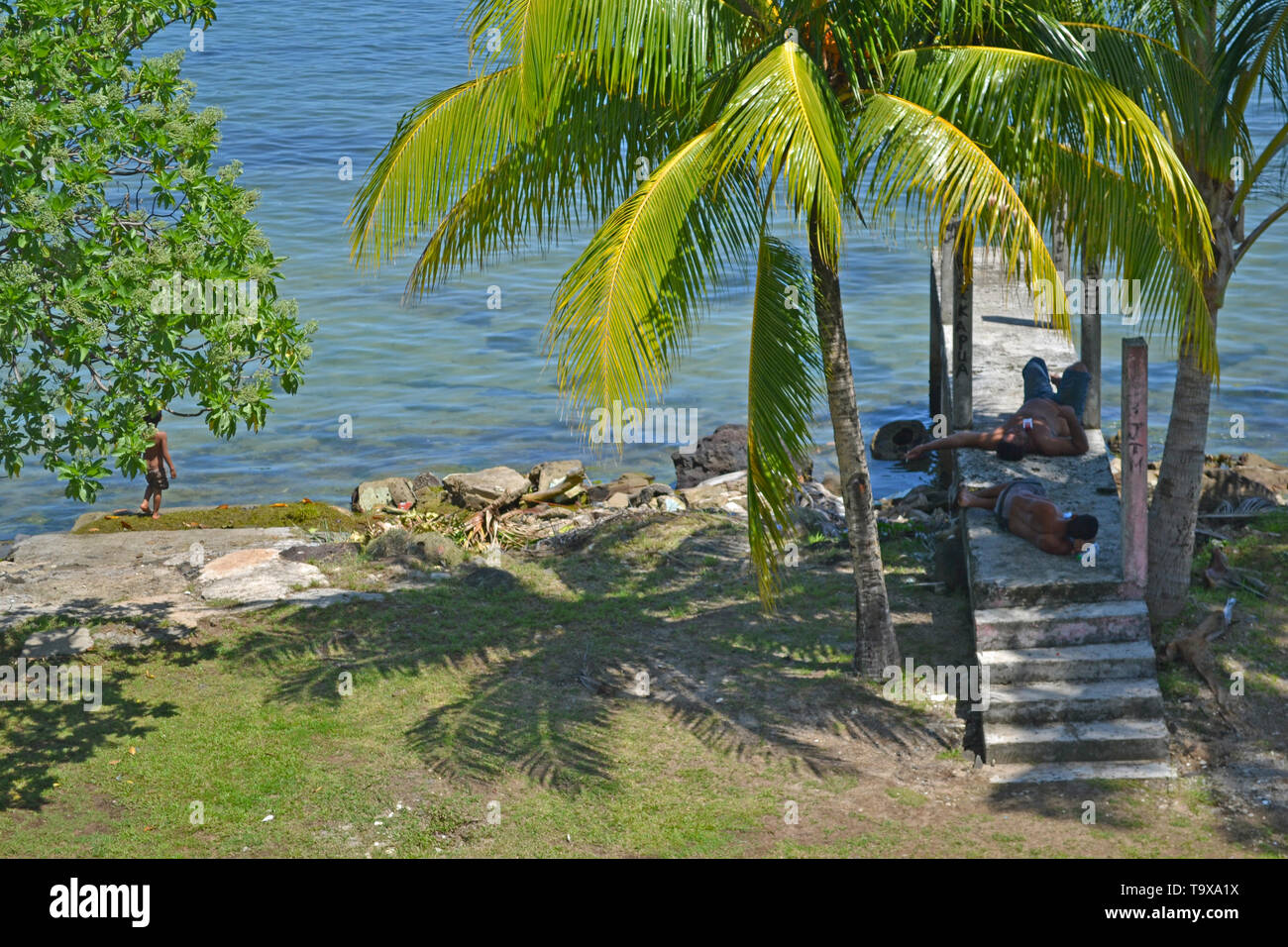 Men take a nap under a coconut tree in Mata-Utu, Wallis Island, Wallis & Futuna, South Pacific - Stock Image