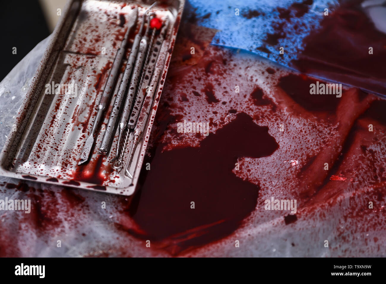 Crime scene with instruments of tortures, closeup - Stock Image