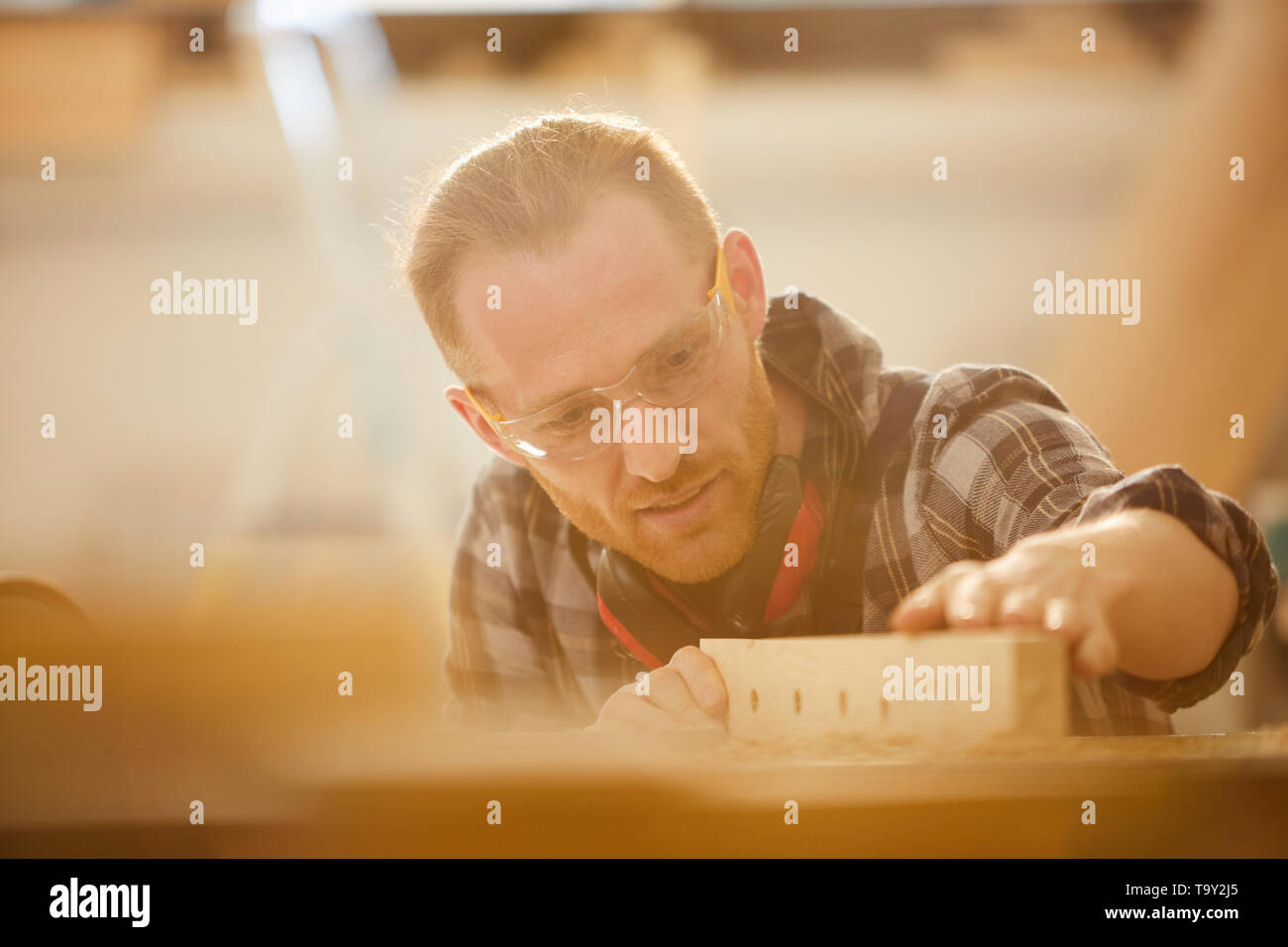 Head and shoulders portrait of modern young carpenter working in sunlight, copy space - Stock Image