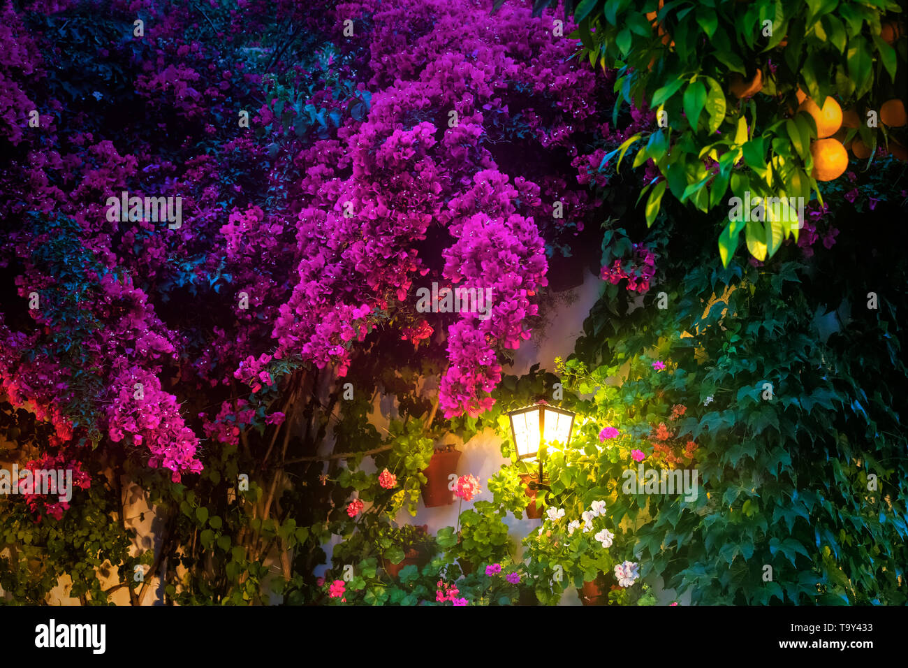 Wall lantern in a typical cordovan patio ornamented for may. - Stock Image
