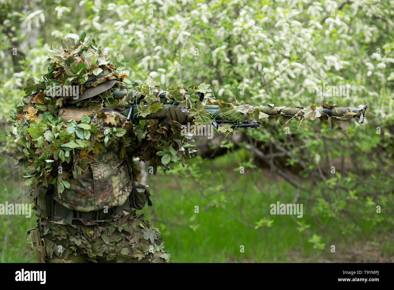 Closeup man sniper in green camouflage military clothing shoots a rifle in the green forest in the summer nature - Stock Image