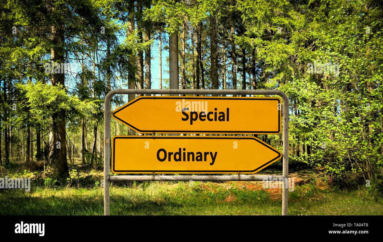 Street Sign the Direction Way to Special versus Ordinary - Stock Image
