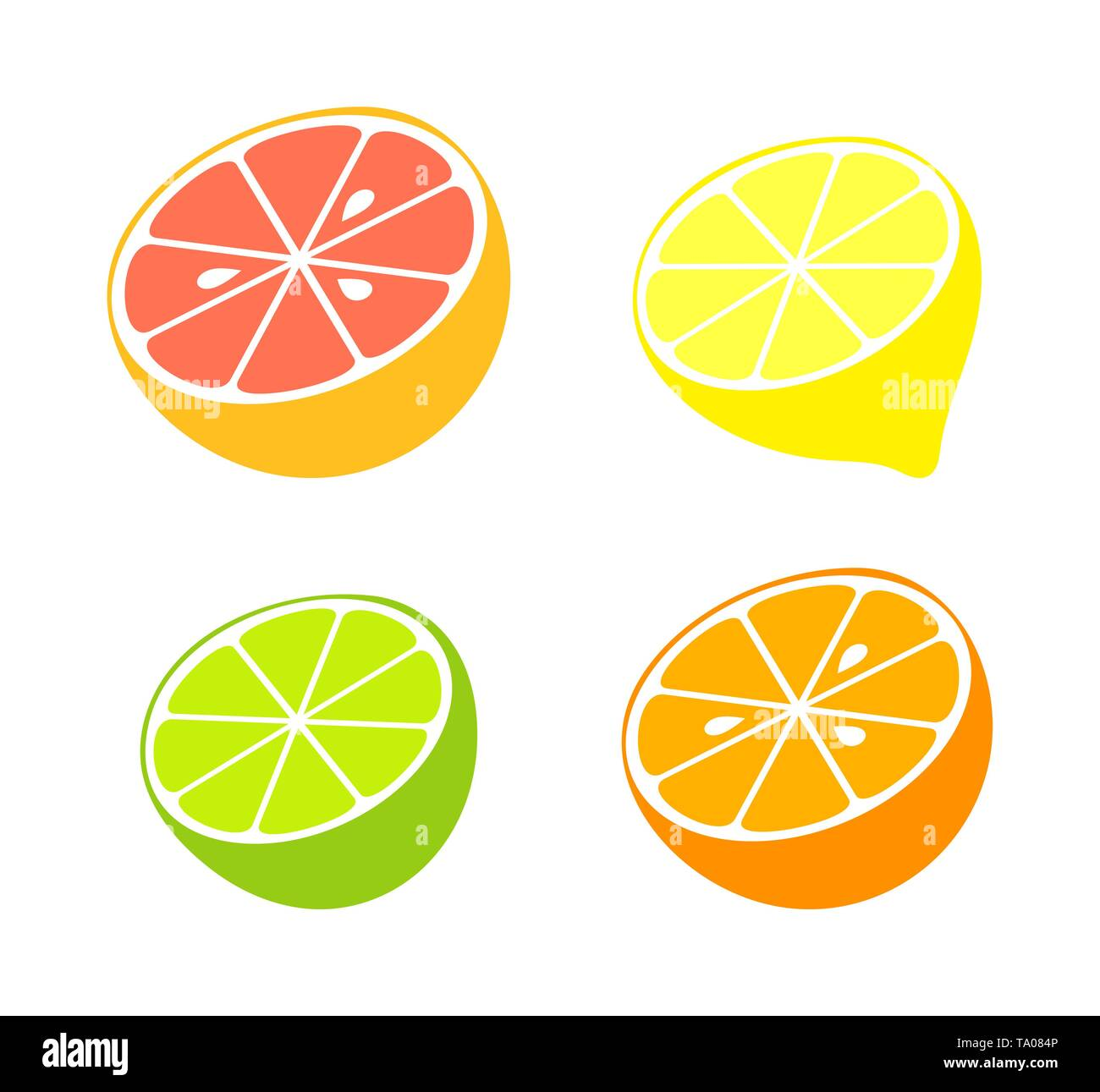 Citrus fruit collection. Vector illustration - Stock Image