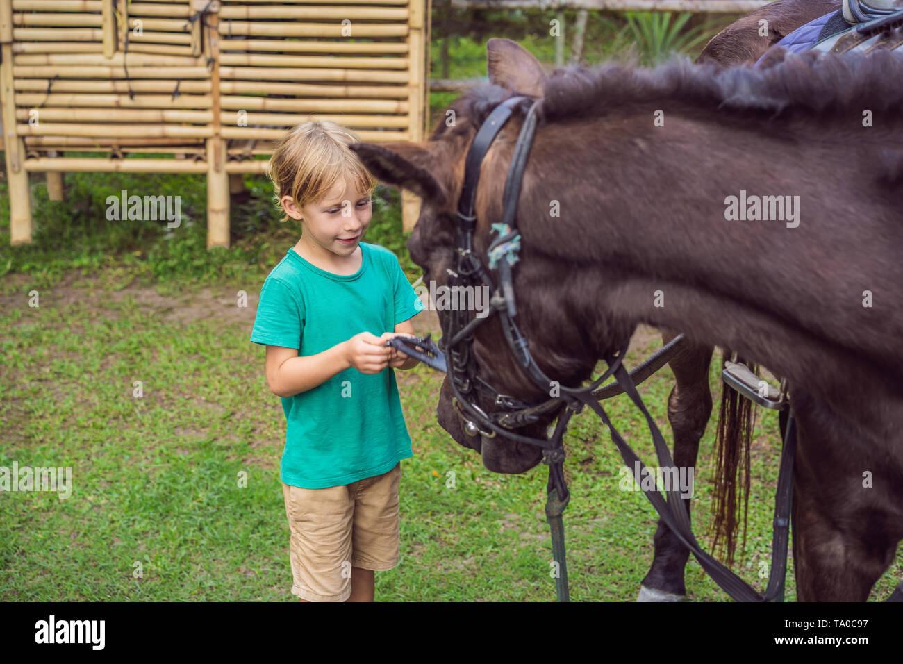 Boy Horseback Riding Performing Exercises On Horseback Stock Photo Alamy