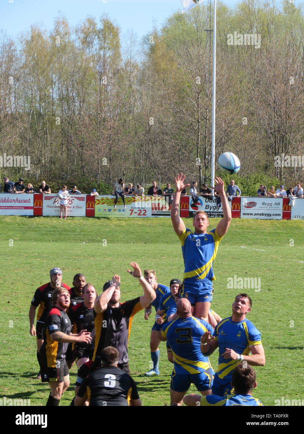Rugby scene of Germany vs Sweden - Stock Image