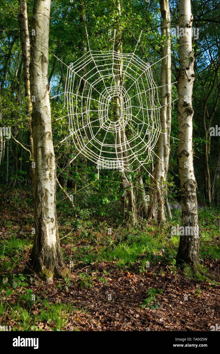 Artwork spiders web in woodland. - Stock Image
