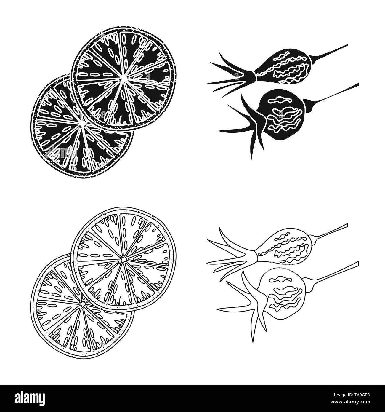 Vector illustration of food  and raw  icon. Collection of food  and nature   stock symbol for web. - Stock Image