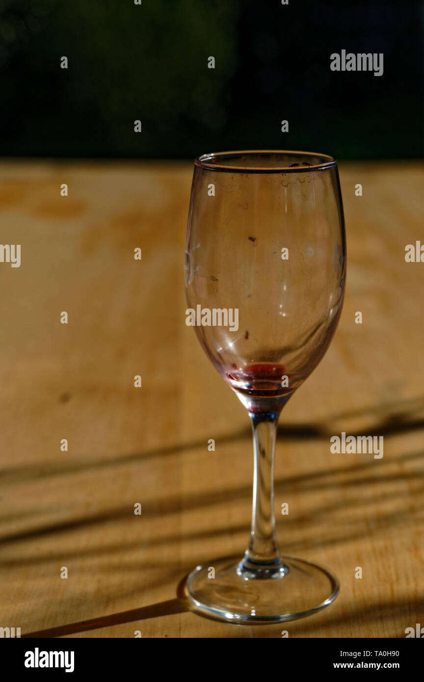 Fruit flies are attracted to a dirty red wine glass left on a table - Stock Image