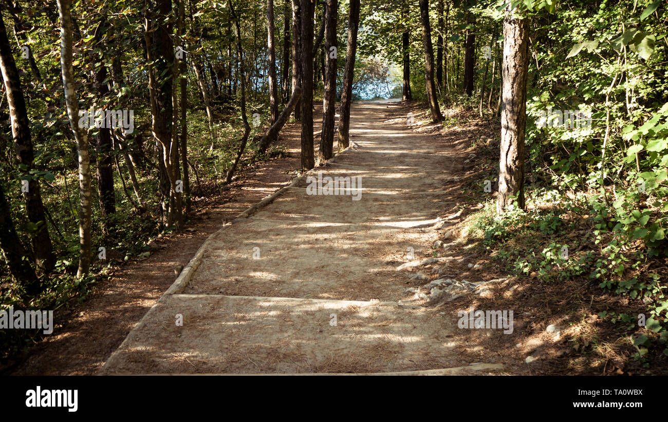 Path in the forest of the National Park at Plitvice Lakes - Stock Image